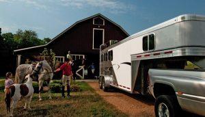 Horse trailer tax