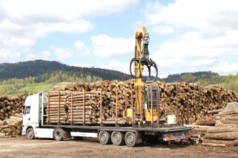 Timber Sale Taxes